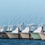 Sports Fishing: Popular Fishing Destinations